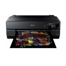 impresora Epson SC-P800 A2